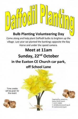 Come and Join Us Daffodil Bulb Planting